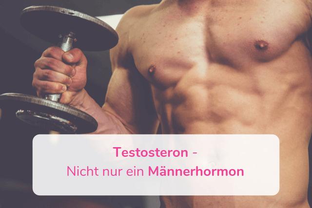 Testosteron – Nicht nur ein Männerhormon