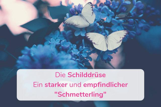 """Die Schilddrüse – Eine starker und empfindlicher """"Schmetterling"""""""