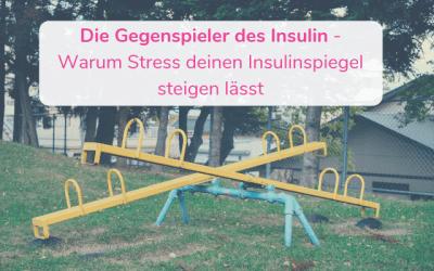 Die Gegenspieler des Insulin – Warum Stress deinen Insulinspiegel steigen lässt