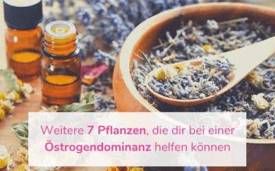 Weitere 7 Pflanzen, die dir bei einer Östrogendominanz helfen können