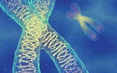 Liegt Hormonchaos (und mehr) vielleicht in deinen Genen?